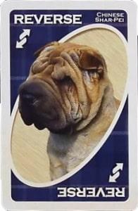 american kennel club non sporting uno reverse card Unorules.org