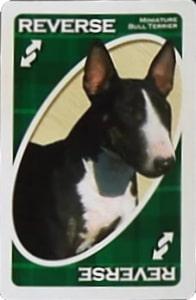 american kennel club terrier uno reverse card Unorules.org